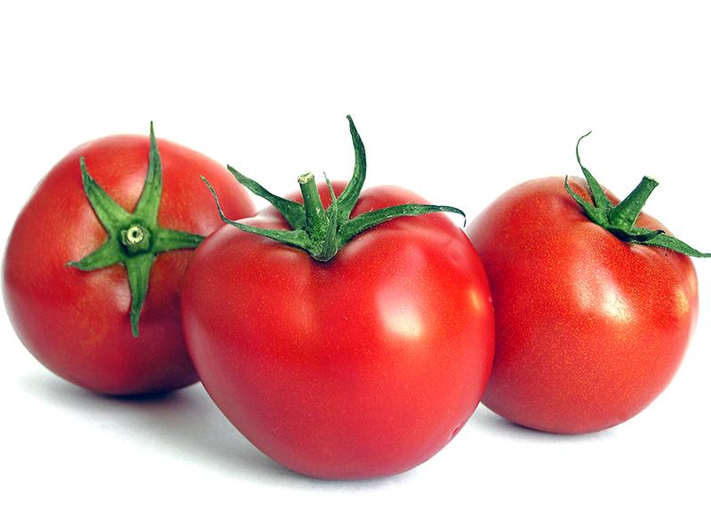 الطماطم تقي من سرطان الجلد|الشفاء الأخضر