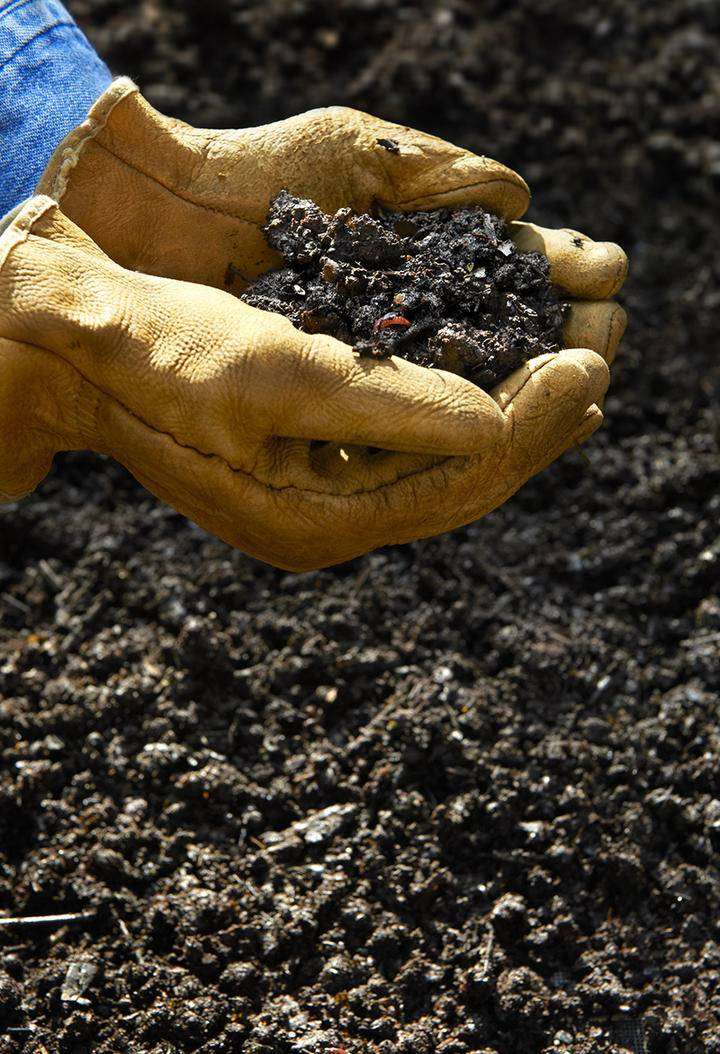 Composting Hand holding compost iS 185317416L.jpg
