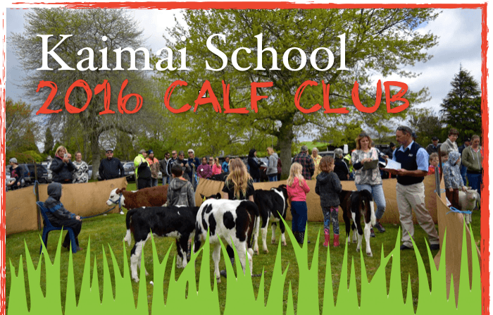 Kaimai School Calf Club