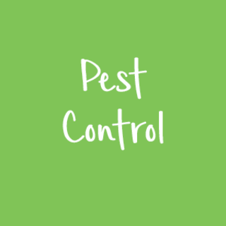 Pest Control Newsletter 8