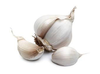 Garlic iS 185408964M sml.jpg
