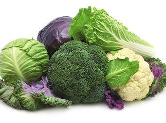 cabbages, broccoli and cauliflower iS62252378.jpg
