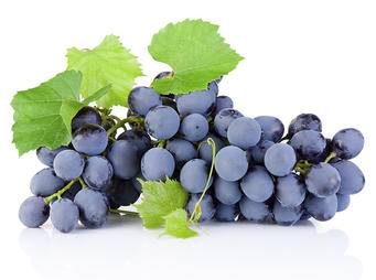 Grapes iS 27409318L.jpg